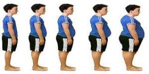 evolucion niño a obeso